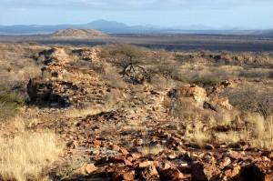 Maremani landscape